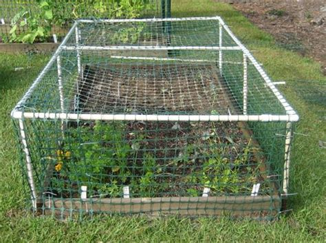 pvc raised garden beds 10 brilliant pvc projects for your homestead gardens