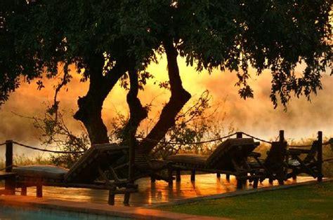 backyard sunset backyard at sunset foto van buckler s africa komatipoort tripadvisor