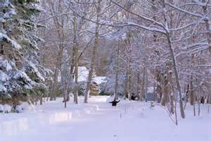 Winter Cabin Rentals Near Me Winter Vacations Maine Rental For Every Time Of Year