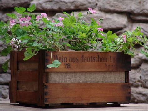 vasi in legno per piante vasi per piante da esterno vasi per piante tipologie