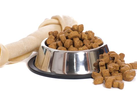 puppy food foods