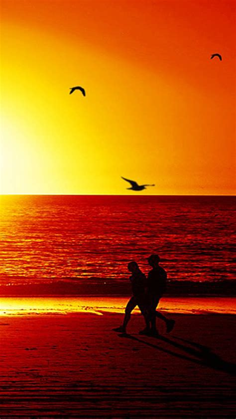 wallpaper for iphone 5 sunset free download spring sunset iphone 5 hd wallpapers free
