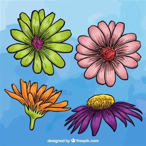 varietà fiori variet 224 di fiori variopinti scaricare vettori gratis
