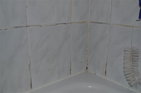 Fliesenfugen Erneuern Bad by Badezimmer Fliesen Fugen Erneuern Badezimmer Fliesen