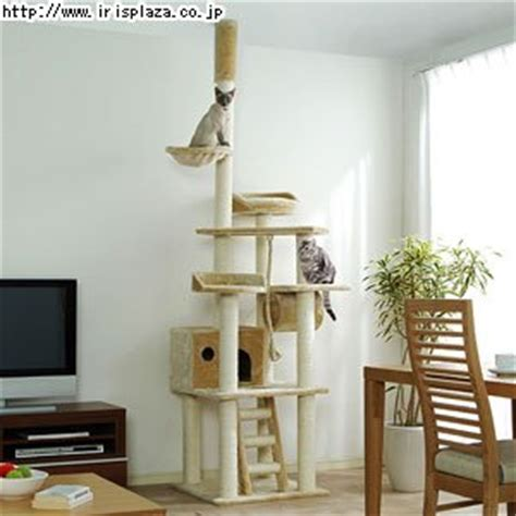 Floor To Ceiling Cat Tree by Catland Floor To Ceiling Cat Tree W Hiding