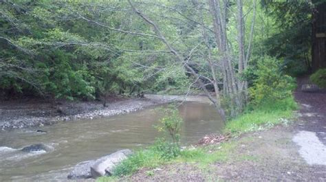 Riverside Cground And Cabins by River In Cgound Picture Of Riverside Cground And Cabins Big Sur Tripadvisor