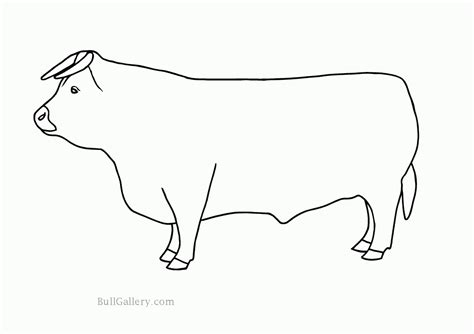 bull coloring free coloring pages of bucking bull