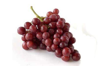 uvas silvestres imagenes uvas la fruta ideal para depurar y nutrir al organismo