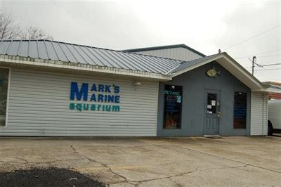 mark s marine aquarium baton rouge la pet stores on