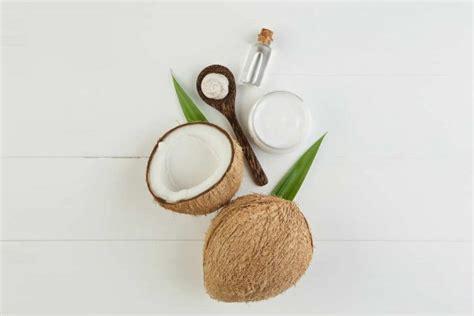 balsamo per capelli fatto in casa shoo e balsamo naturali fai da te 10 ricette eco non
