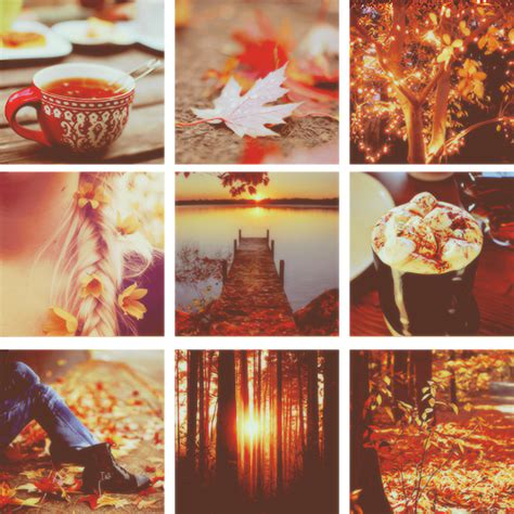 tumblr themes free autumn beauty of autumn pictures photos and images for facebook