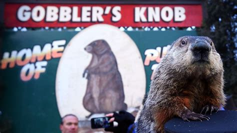 groundhog day repeat for groundhog day hear radio s records on repeat