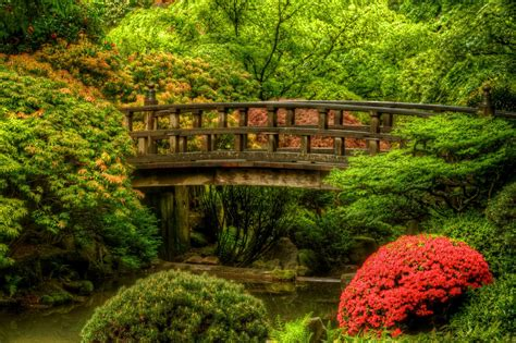 t stop photography portland japanese garden