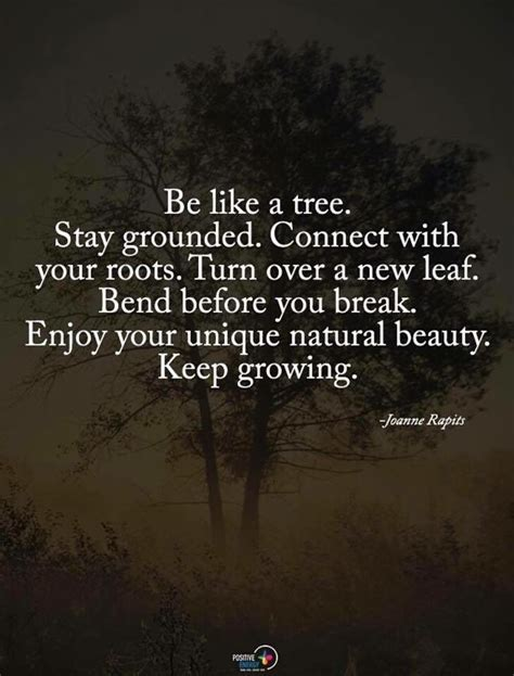 tree quotes best 25 being unique quotes ideas on to my