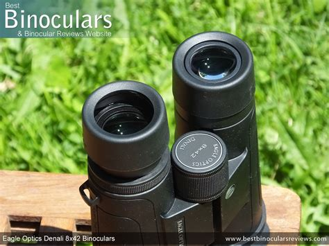 eagle denali 8x42 review eagle optics denali 8x42 binoculars review