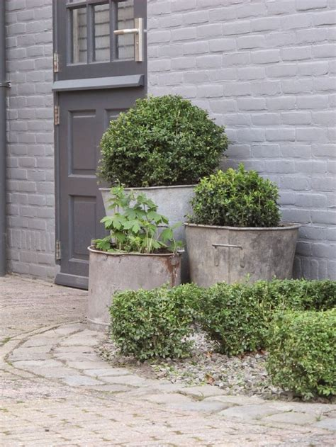 Galvanized Planter by Best 25 Galvanized Planters Ideas Only On Galvanized Water Trough Metal Planters