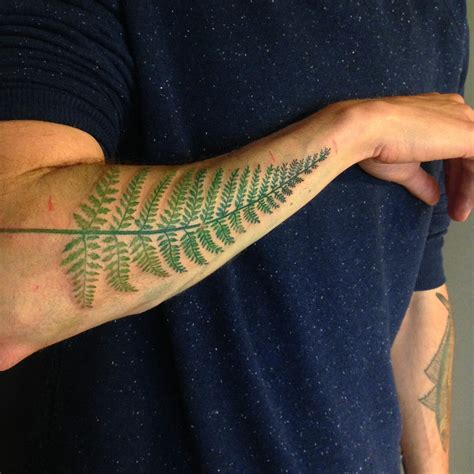 fern tattoo designs fern leaf on arm best ideas gallery
