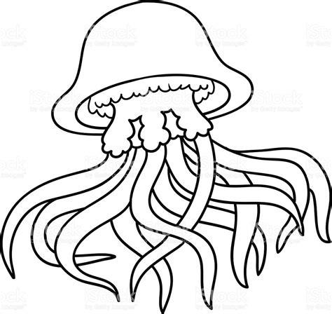 libro animalium colouring book welcome libro para colorear medusa illustracion libre de derechos 503564698 istock