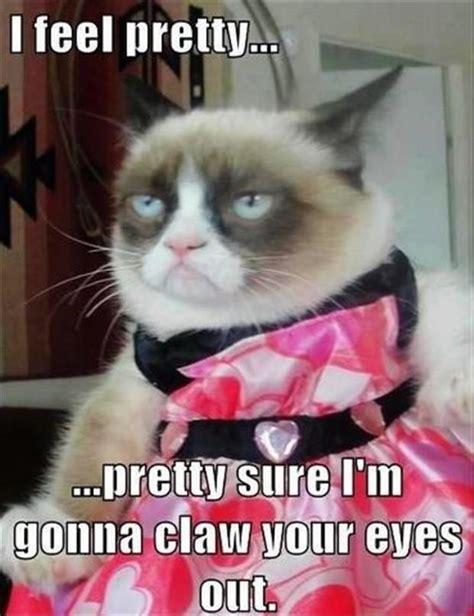 Grumpy Cat Wedding Meme - funny pictures 39 pics