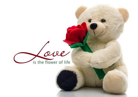 happy promise day 11 feb 10 february teddy day 11 february promise day images
