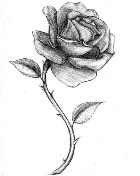 sketchbook kosong pagi dan bunga catatan kosong