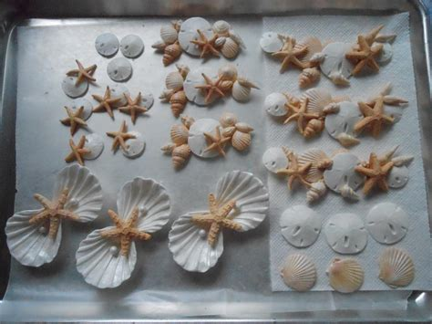 craft projects with seashells seashell projects cake decorating ideas project on
