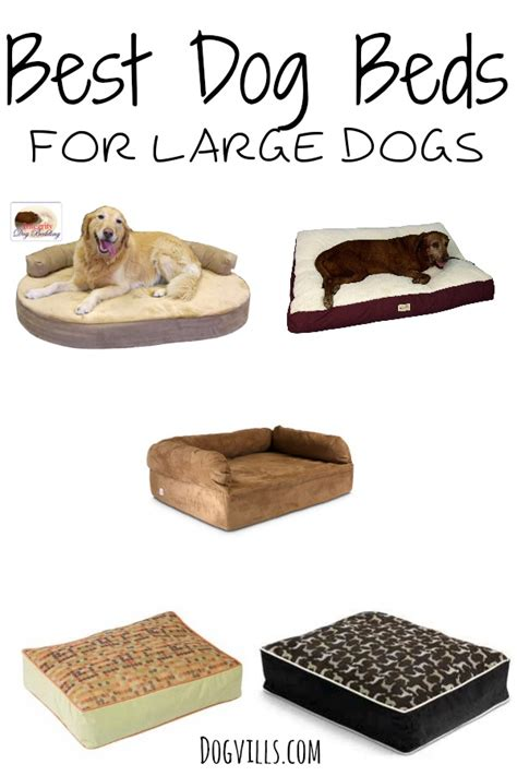 best large dog beds best dog beds for large dogs dogvills