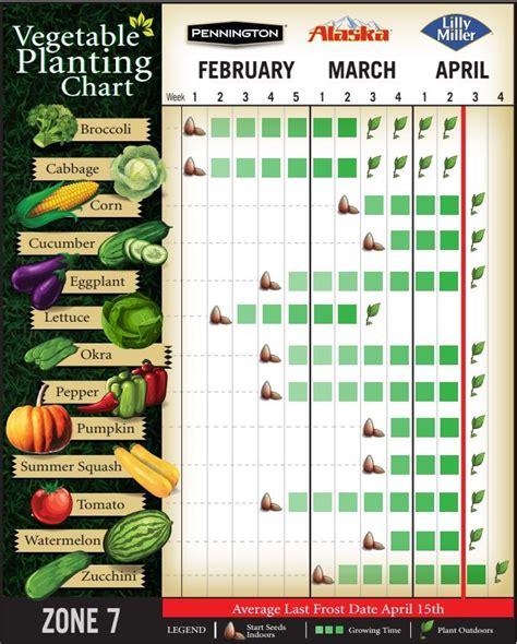 start indoor vegetable seeds winter vegetables