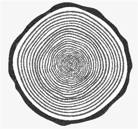 tree ring coloring page tree rings the tree ring texture originality png image