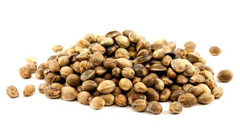 Zeolite Thc Detox by Organic Hemp Seeds Hemp Seed Suppliers Uk