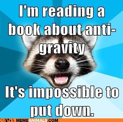 Reading Memes - meme monday teenfictionbooks page 3
