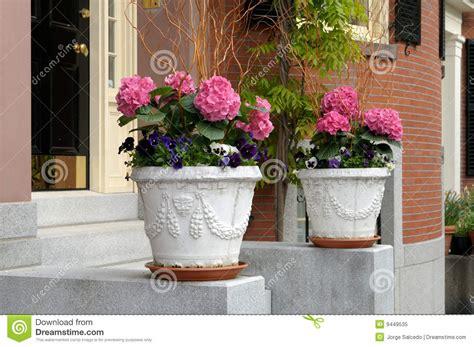 In Door Plant Put In Pot Vide by In Door Plant Put In Pot Vide 28 Images The Prettiest