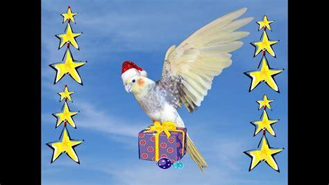 merry christmas  australia youtube