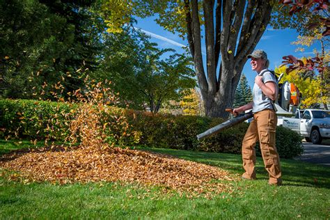 Landscape Rake Edmonton Fall Clean Up Services Calgary 403 520 5000 Fall Lawn
