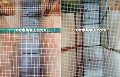 Kawat Ram Per M2 murai batu md cepu bf andalkan penjodohan dan pengasuhan alami
