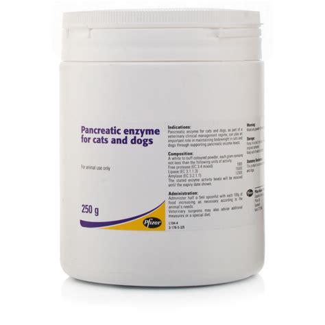pancreatic enzymes for dogs pancreatic enzyme for cats dogs ebay