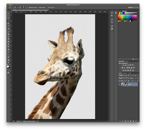 tutorial photoshop how to remove background how to remove background photoshop cut out an image