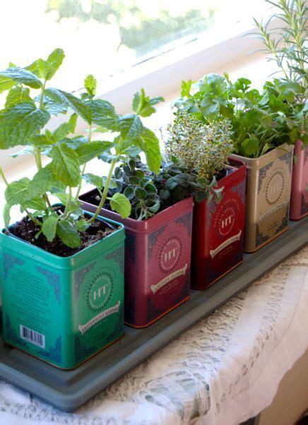 fensterbrett garten herb garden in tea tins great tutorial taming