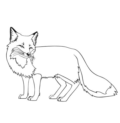 Coloring Page Fox by Pin By Shreya Thakur On Free Coloring Pages Fox Coloring