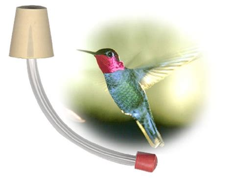 this deals hummingbird feeder tubes for making your own