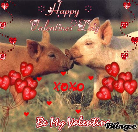 valentines pig pigs picture 107150823 blingee