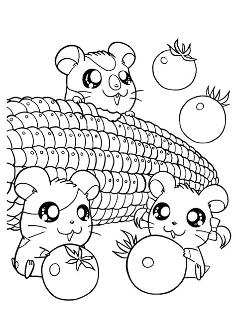 cute hamster coloring pages az coloring pages