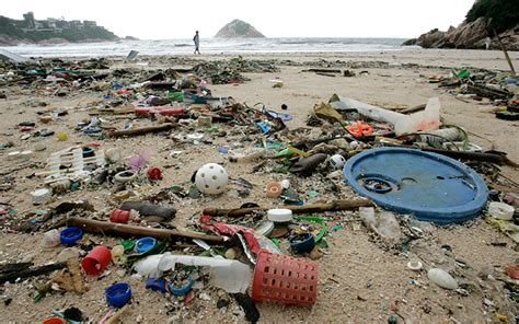 One Man?s Trash is Another?s Art ? Raising Marine Life