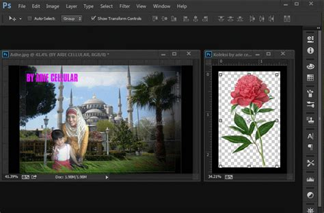 cara buat format gif di photoshop arie cellular koleksi gambar bunga format png