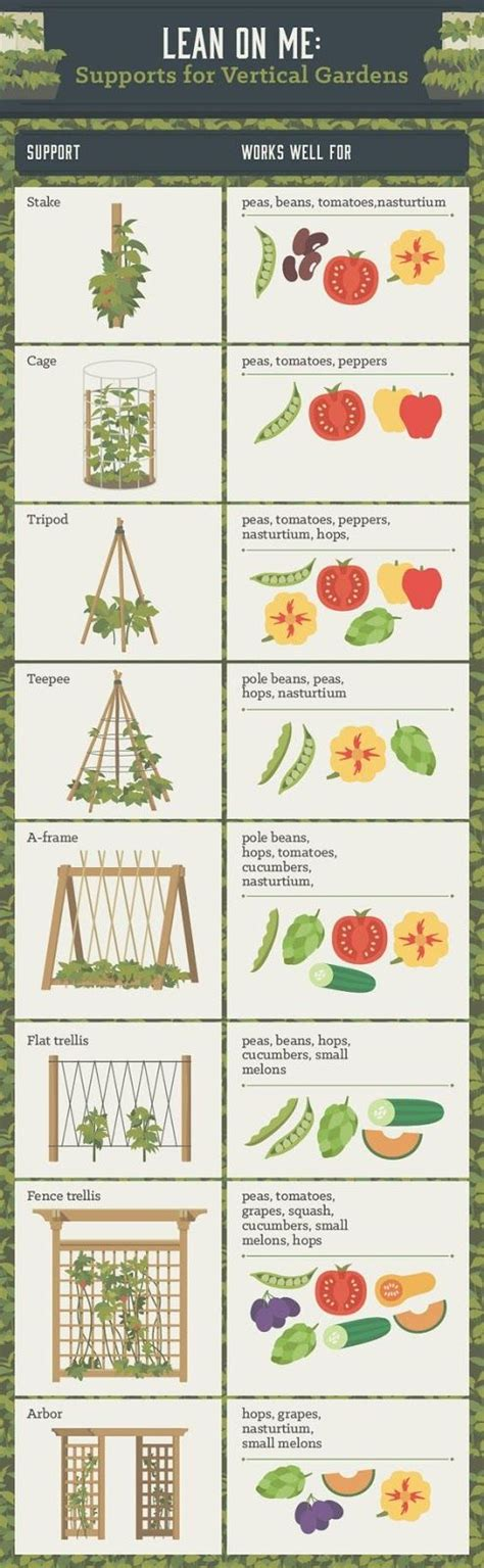 best vegetable garden layout 25 best ideas about vegetable garden layouts on