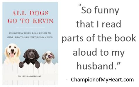 all dogs go to kevin all dogs go to kevin book review graphic chion of my