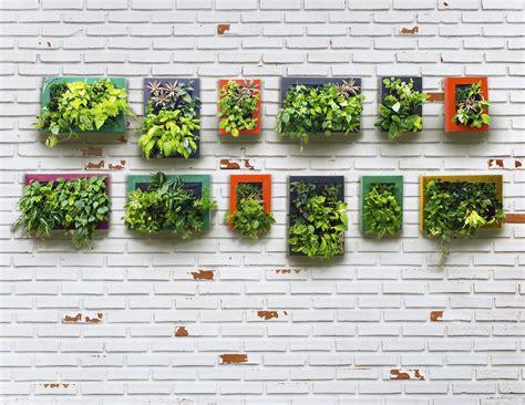 design  perfect vegetable garden   space