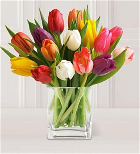 west florist 15 stem mixed tulips with glass