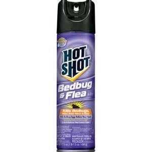 bed bugs spray hit my rome