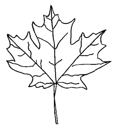 fall leaves coloring pages to print autumn season coloring
